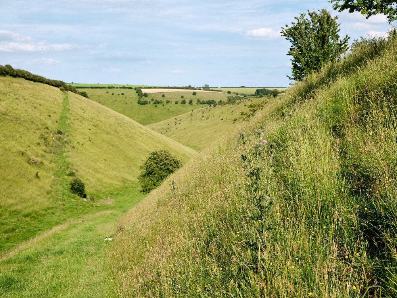 Yorkshire wolds rolling hills and valleysx4