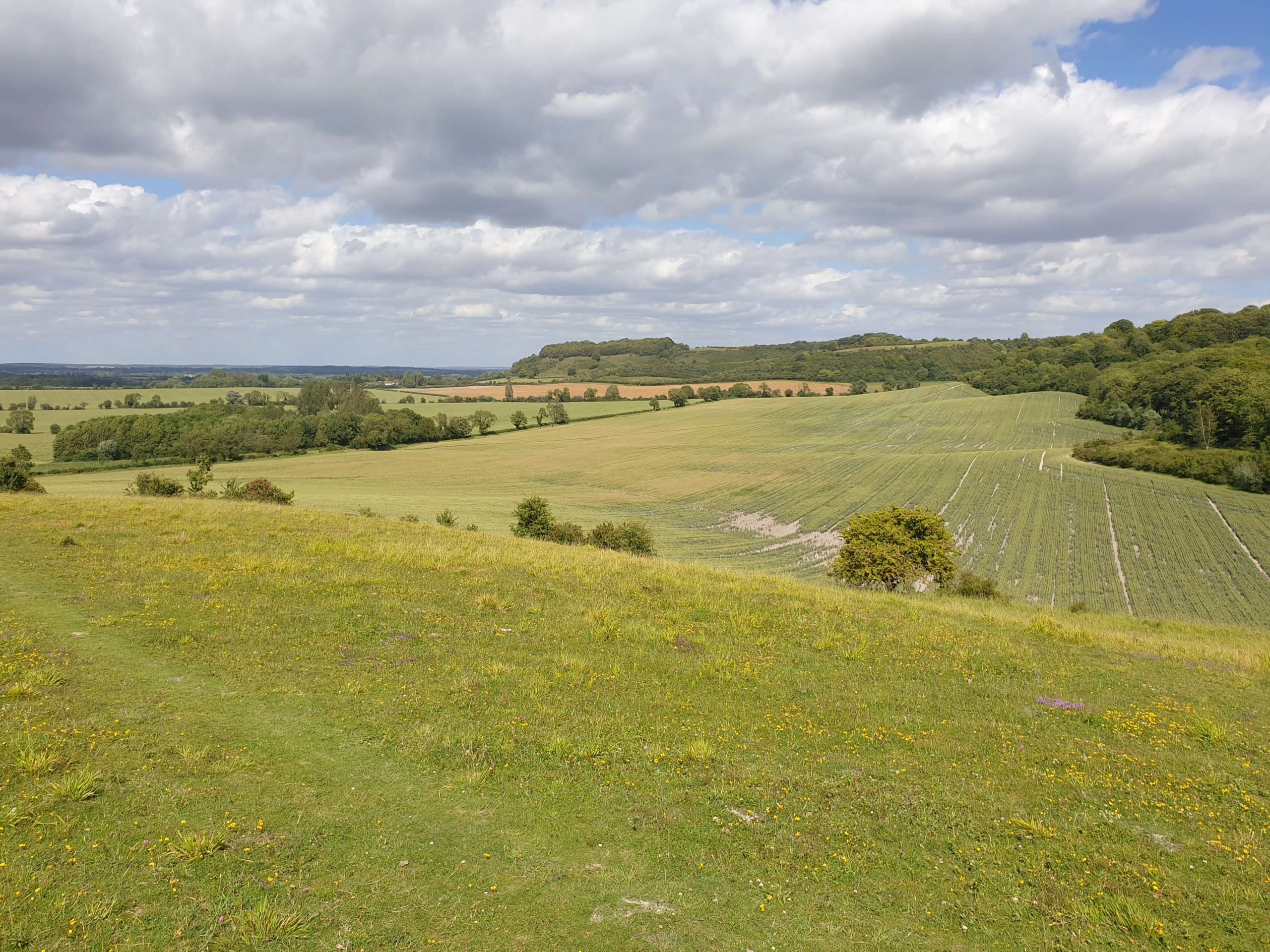 Icknield Way, green hills, countryside, UK Walking holiday top ten tips for a successful trip